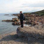 posidonia residui 10 150x150 Posidonia oceanica residui a terra egagropili e banquettes