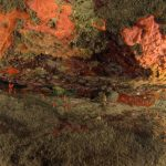 spirastrella 90 150x150 Spirastrella cunctatrix   Spirastrella